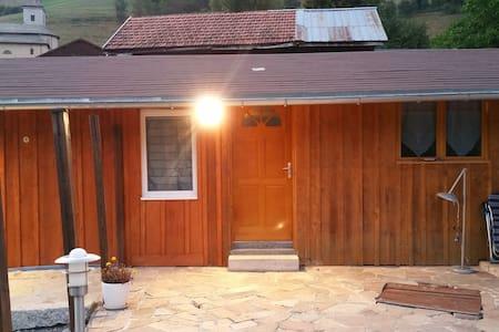 studio de charme indépendant avec grande terrasse - Vailly - Apartment