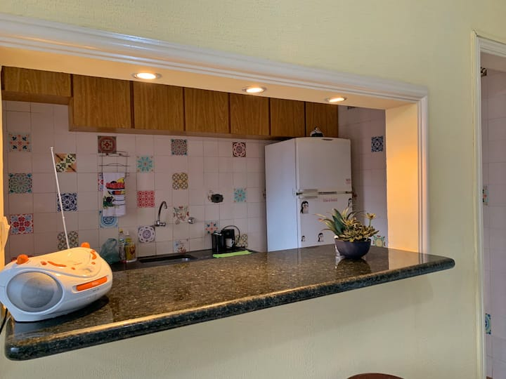 Bright, newly renovated Apt in Santos