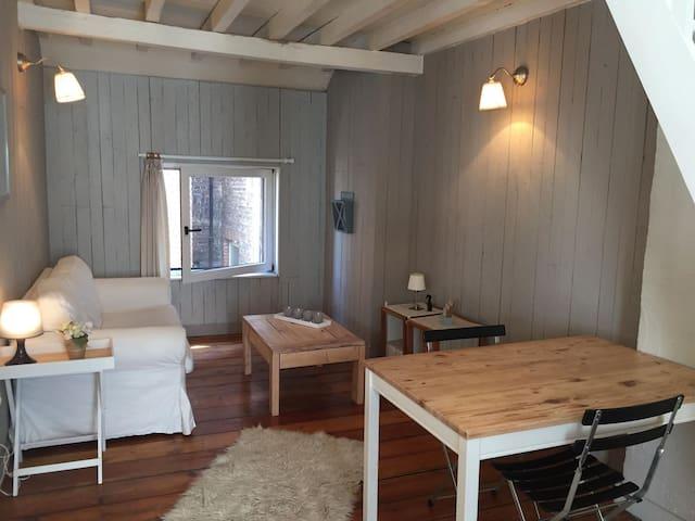 Appartement  Bruxelles proximité place Louise