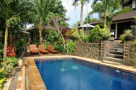 Villa Tenang - pool and gardens - - Selemadeg - 别墅