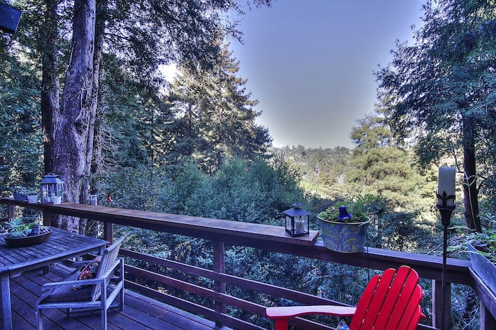 Quintessential Mill Valley home