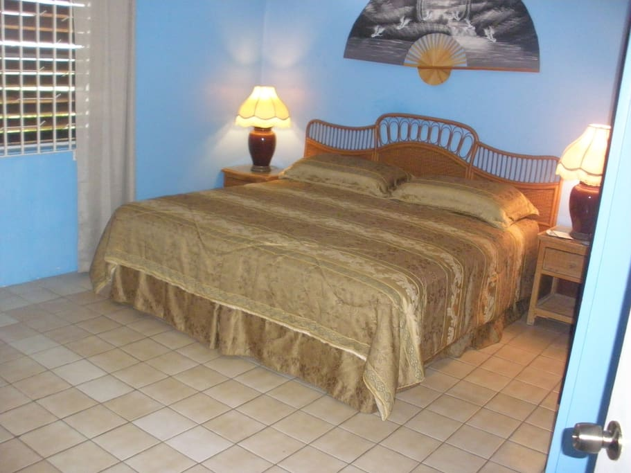 Private Bedroom, King bed, shared bath