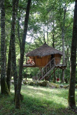 Cabane de Peyre Hitte, perchée à 3m, de 2 à 7 pers - Cazarilh