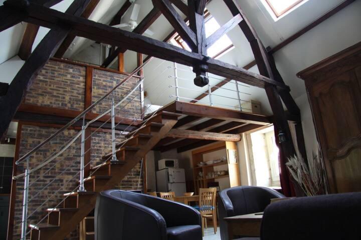 Bel appartement,style loft, Vieux Port La Rochelle - La Rochelle - Loft