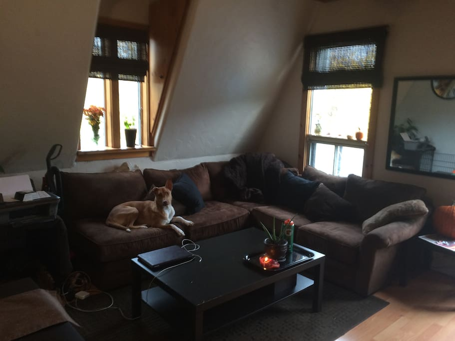 Cozy sectional in well-light living room can offer extra sleeping room.