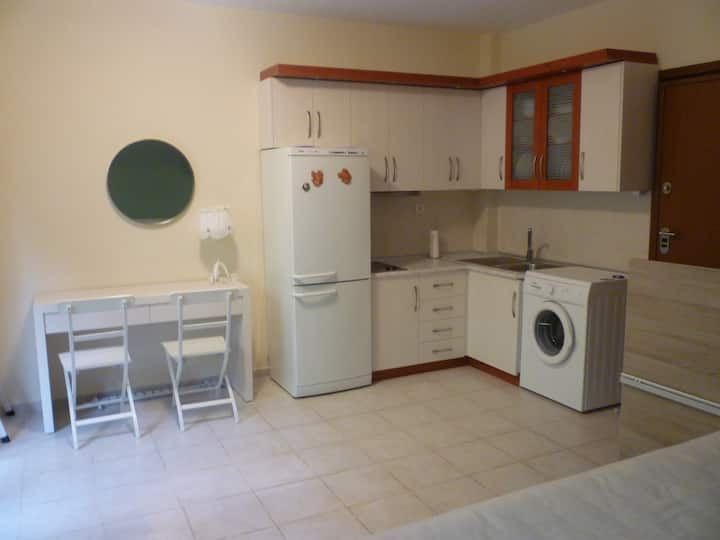 Cosy studio 50m from the sea, lovely garden