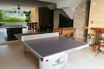 Professional Table Tennis