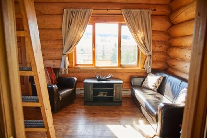 Lake View Log Cabin