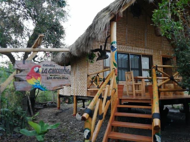 """Double Cabin - """"La Guacamaya"""""""