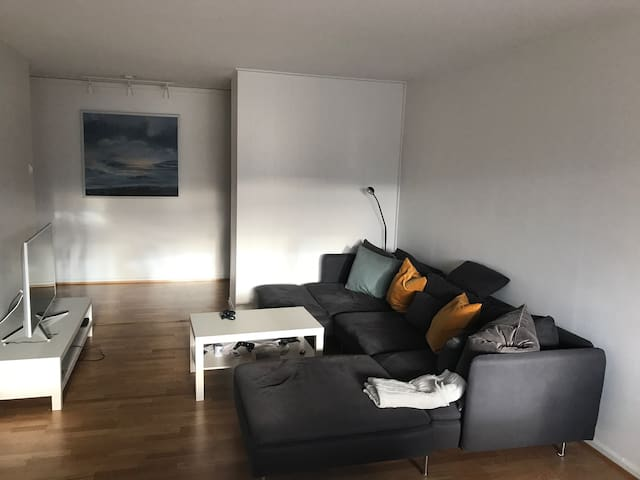 3-roms in the heart of Hamar - Hamar - Apartment