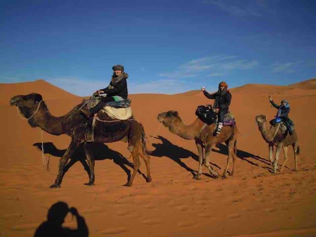 trips to sahara desert merzouga