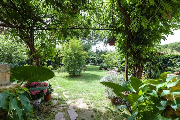 5 A splash of green in the city, close to airport - Pise - Bed & Breakfast