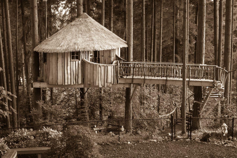 treehouse masters pete nelson daughter. Africa In Auburn - Treehouses For Rent Auburn, Washington, United States Treehouse Masters Pete Nelson Daughter