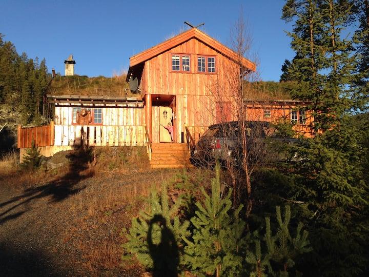Bjørnehuset- ski inn-out