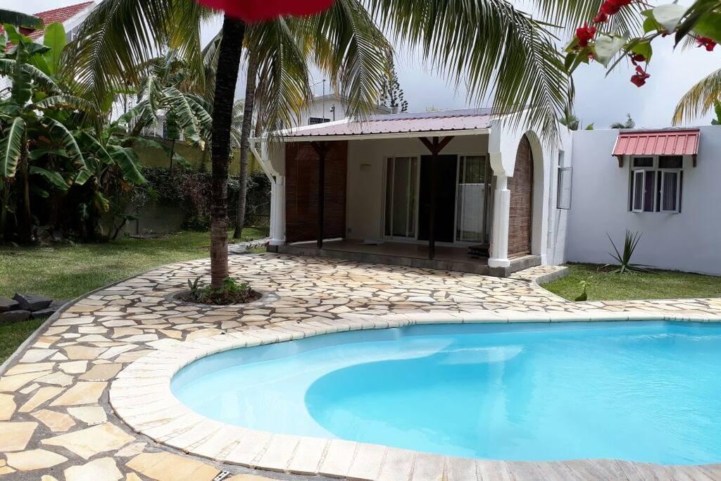 Swimming pool and yard