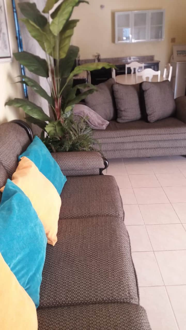 Rental Apartment and Guest House