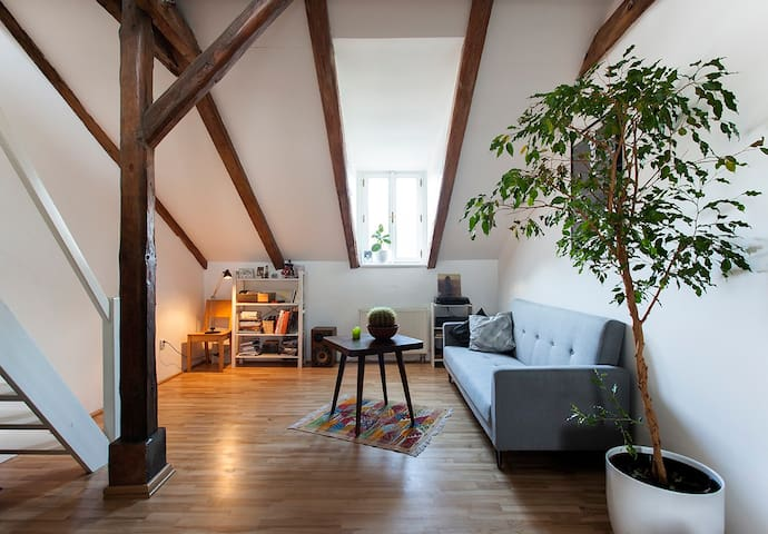 Beautiful Attic Apartment in Letna - Prag - Lägenhet