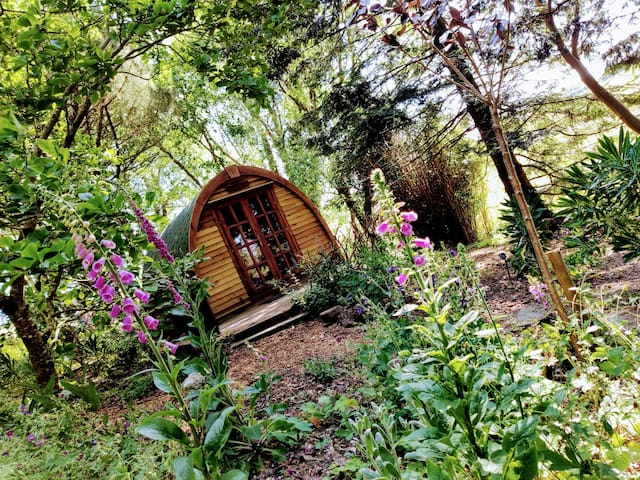 Glamping in 'Wollemia' The Peaceful Pod