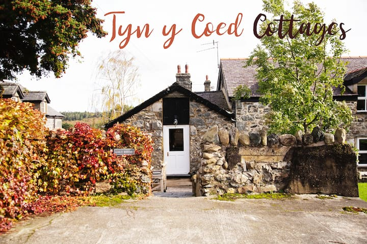 Cosy Converted Barn with Mountain Views -Snowdonia
