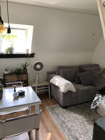 Renovated studio in beautiful area
