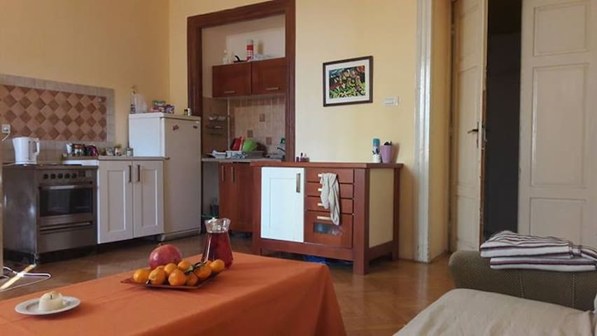 Open kitchen in the livingarea
