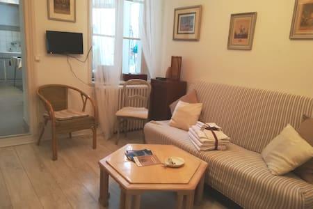 Appartement avec petite cour quartier Laon Zola