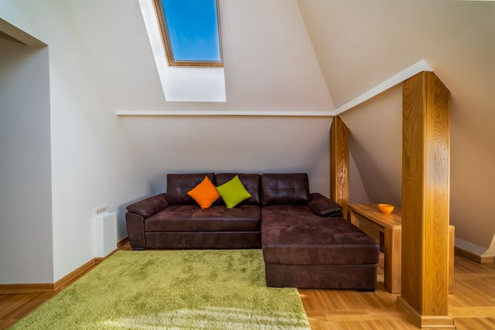 Shiny 1BDR Apartment In The Heart of Zlatibor