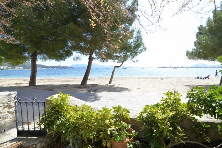 Casa en primera línea de playa en Port de Pollença - Port de Pollença - Dom