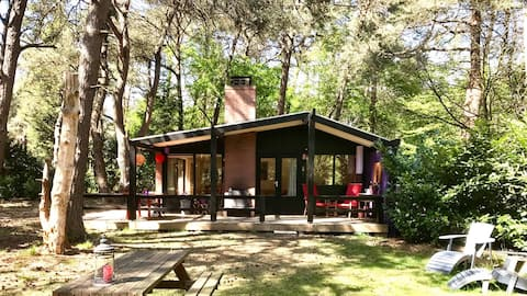 Gezellig boshuisje met veranda-open haard-boomhut