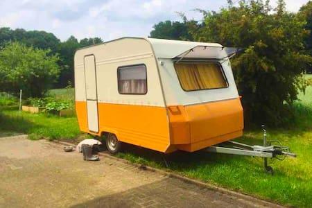 Zelten / Camping im Garten - Little Bee's Cottage