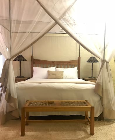 Queen size bed with luxurious mosquito net.