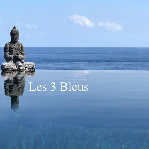 Villa les 3 Bleus- Chambre privée-2p-Bleu mer