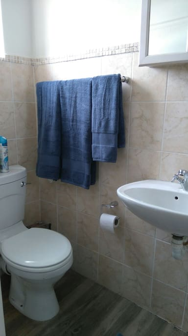 Toilet and shower en-suite