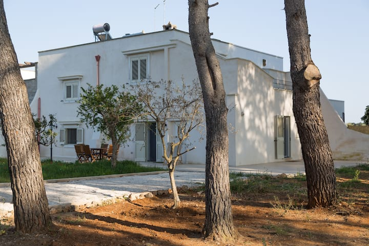 Salento's Villa, countryside and Med Sea.