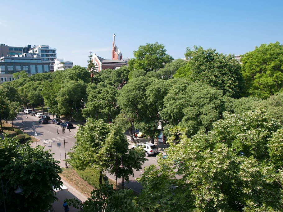 View of Slivnitsa boulevard  from the dining room window
