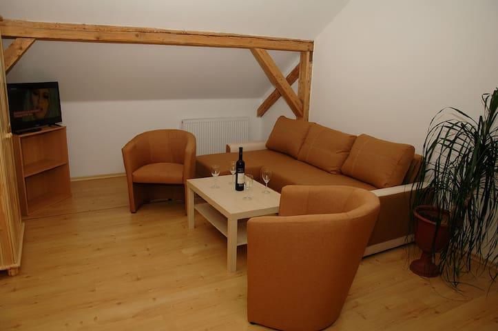 Apartmá pro 6 osob v penzionu Daniela 80 m2