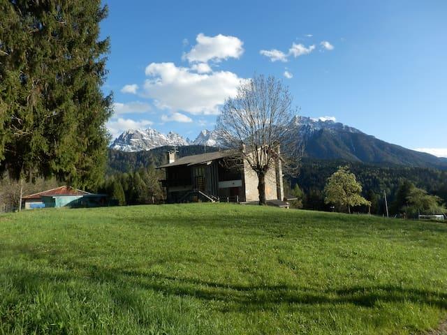 Vacanze serene nelle Dolomiti vicino al bosco