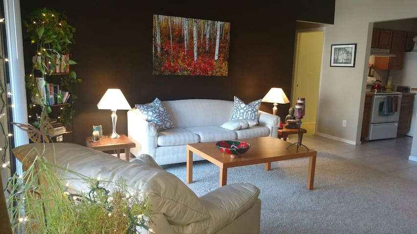 Red Rocks/Denver Comfortable Condo with Fireplace!