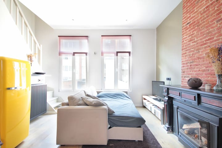 Renovated apartment in the centre - Antwerp - Lägenhet