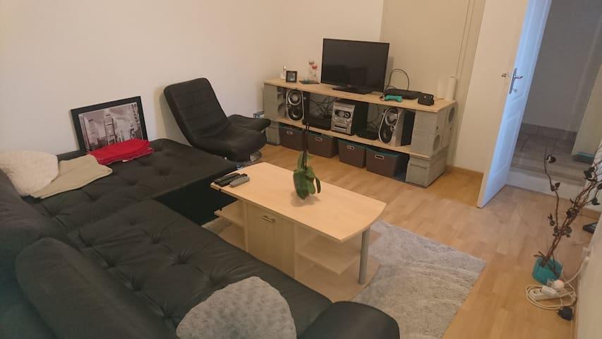 Petit logement très bien situé et agréable - Oulmes - House