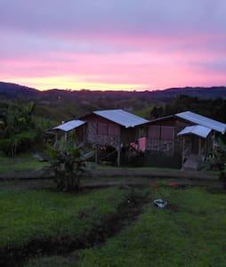 Cabaña especial para el descanso - Agua Buena - Sommerhus/hytte