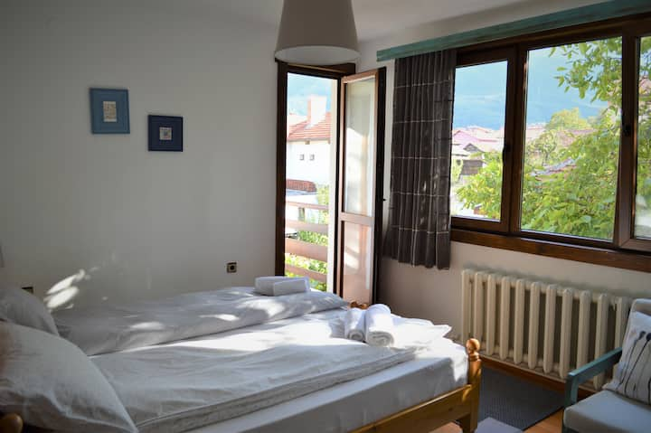 Charming Twin Room * Sema Guest House * Bansko
