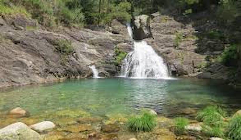 Rio Ancora
