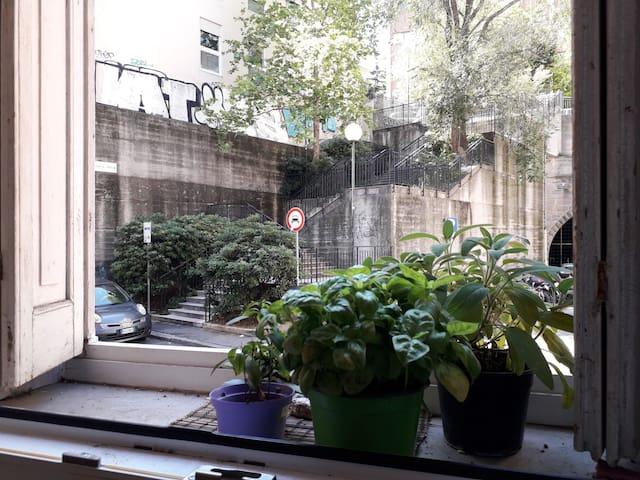 Allegro appartamento nel cuore della città