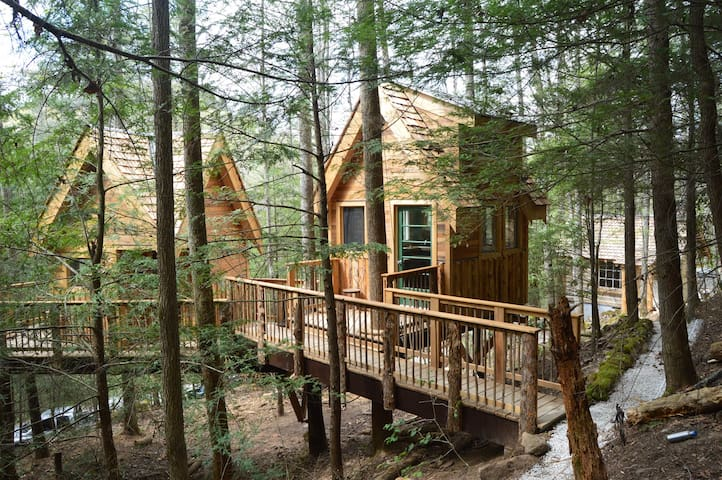 Master Bedroom and Kitchen Tree Houses