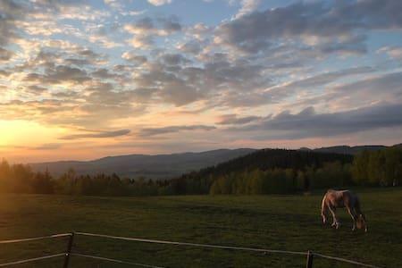 Domek Dominika. Konie, góry i cisza od zgiełku.