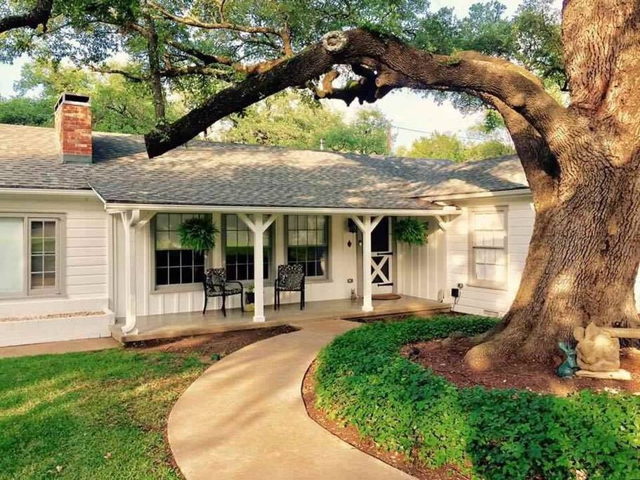 Front porch and one of our 400 year old oaks.