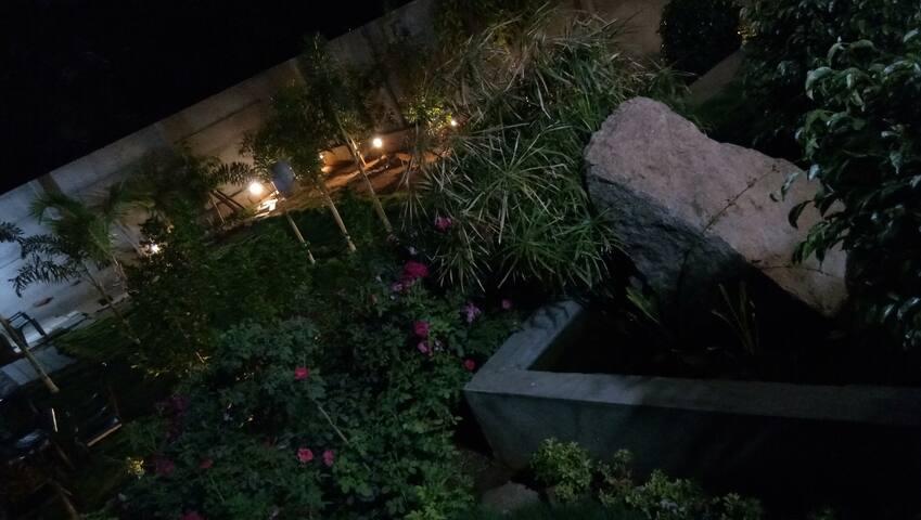 Night view garden.