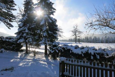 Ferienwohnung mit Sonnenterrasse - Schramberg