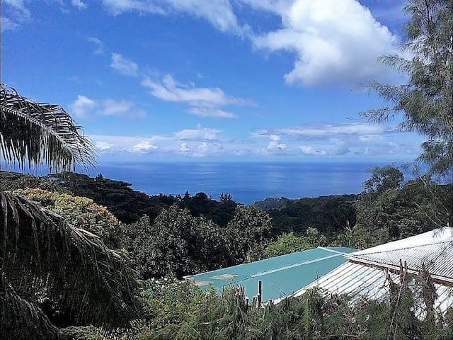 Large studio facing jungle valley and ocean view. - Māhina